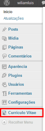 Painel ‹ wiliamluis — WordPress